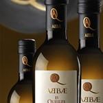 Arbequina - Organic